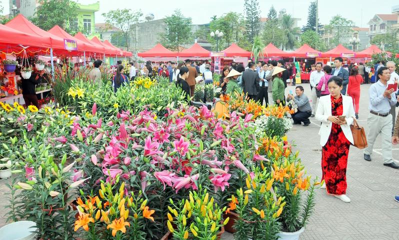 Làng hoa Đồng Chè (phường Hoành Bồ, TP Hạ Long) sẽ được xây dựng tuyến phố đi bộ và quảng trường hoa. Ảnh: Thanh Tùng